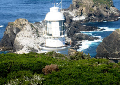 The-lighthouse-on-Maatsuyker-Island